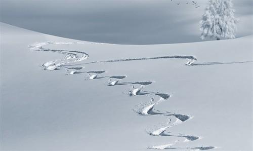 滑雪.png