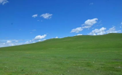 草原3.png