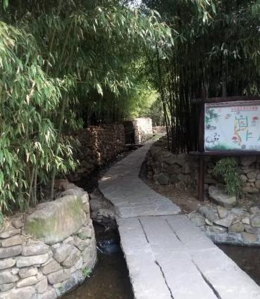 竹泉村4.png
