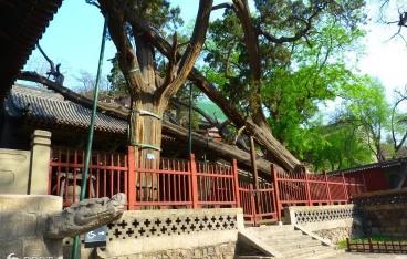 云台山9.png